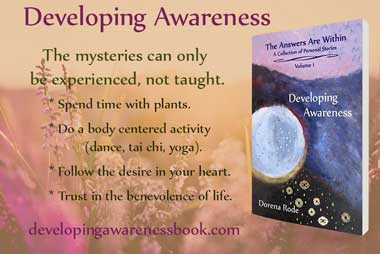 quote from developing awareness book
